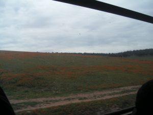 車窓から見える景色
